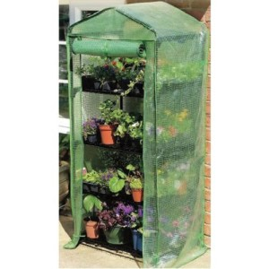 mini outdoor greenhouse image