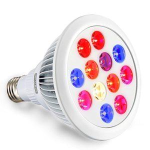 full spectrum grow light bulb