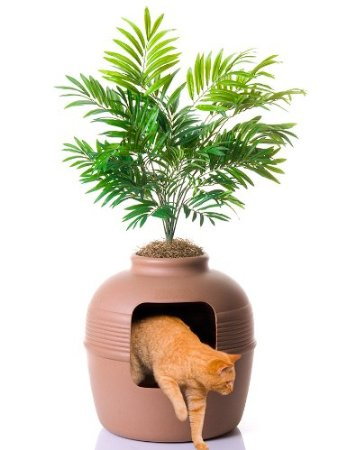 litter box hidden in plant pot image