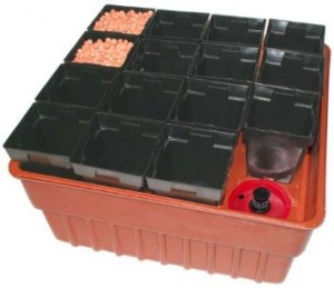 image of a home hydroponics starter kit