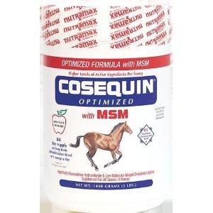 cosequin horse supplement with msm
